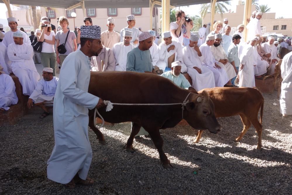 Live animal market in Nizwa, Oman